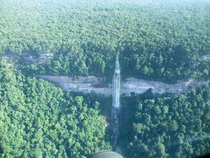 La jungle luxuriante du Guyana